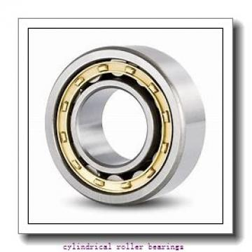 FAG NU315-E-M1-C4  Cylindrical Roller Bearings