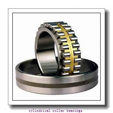 2.953 Inch | 75 Millimeter x 4.248 Inch | 107.9 Millimeter x 1.181 Inch | 30 Millimeter  INA RSL183015  Cylindrical Roller Bearings