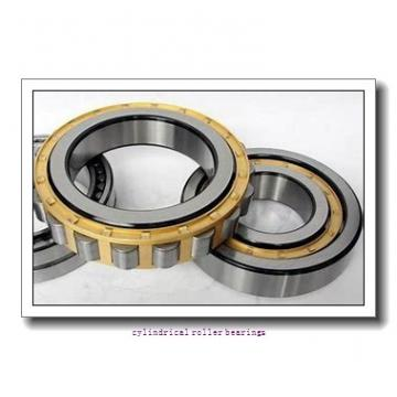 1.575 Inch   40 Millimeter x 2.793 Inch   70.94 Millimeter x 0.906 Inch   23 Millimeter  INA RSL182208  Cylindrical Roller Bearings